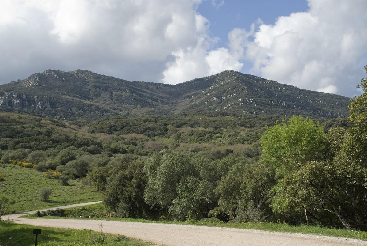 jimena frontera alcornocales: