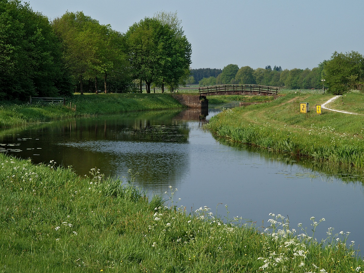 NL, Drenthe, Borger-Odoorn, Drouwenerveen 1, Saxifraga-Hans Dekker.jpg
