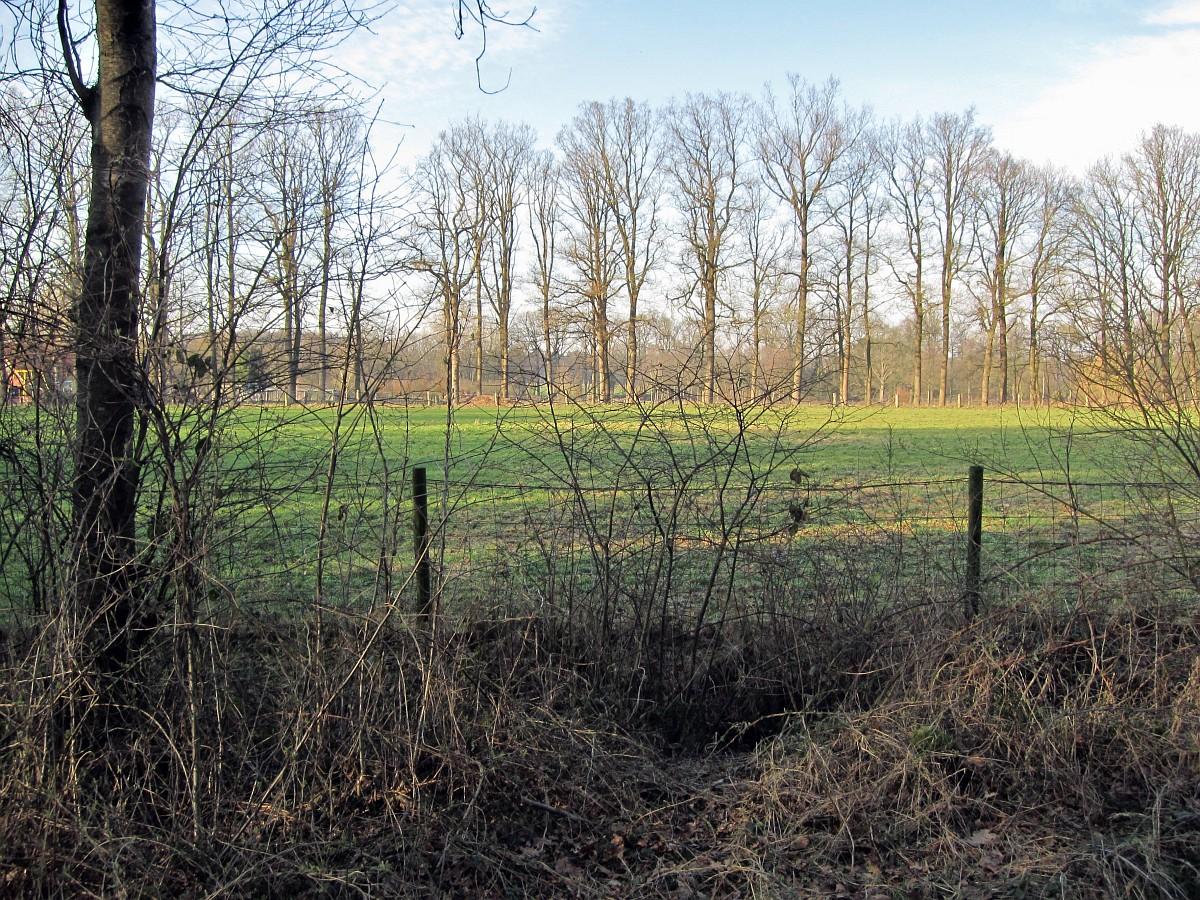 263-478, N, 9-2-2011, NL-Marco van Hummel, 52.17027 NB-6.58641 OL,  Losser.jpg